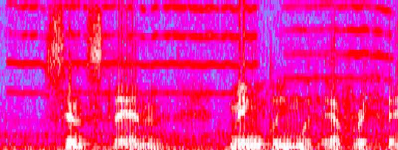 Mechanical Tape Squeak Visible as Uniform Horizontal Lines with Audacity Spectrogram