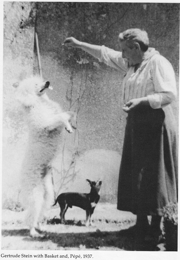 Gertrude Stein with Basket and Pepe (1937)