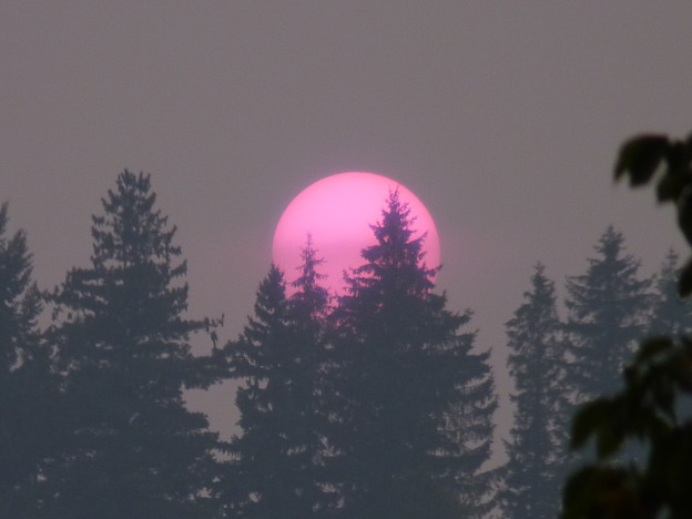 Northwestern U.S. Forest Fire Smoke Sunset, 8/24/15 (Pullman WA)
