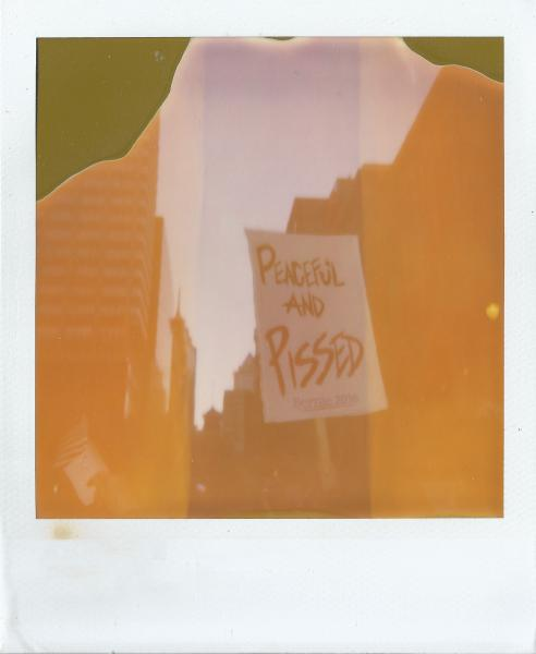 "Polaroid image of protest, with sign reading ""Peaceful and Pissed"""