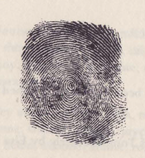 Image of a thumbprint